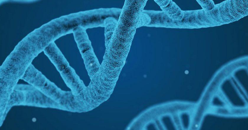 Le séquençage ADN-miniaturise-une-innovation-qui-en-entraîne-une-autre